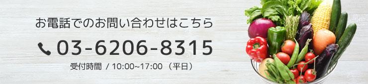 03-6206-8315